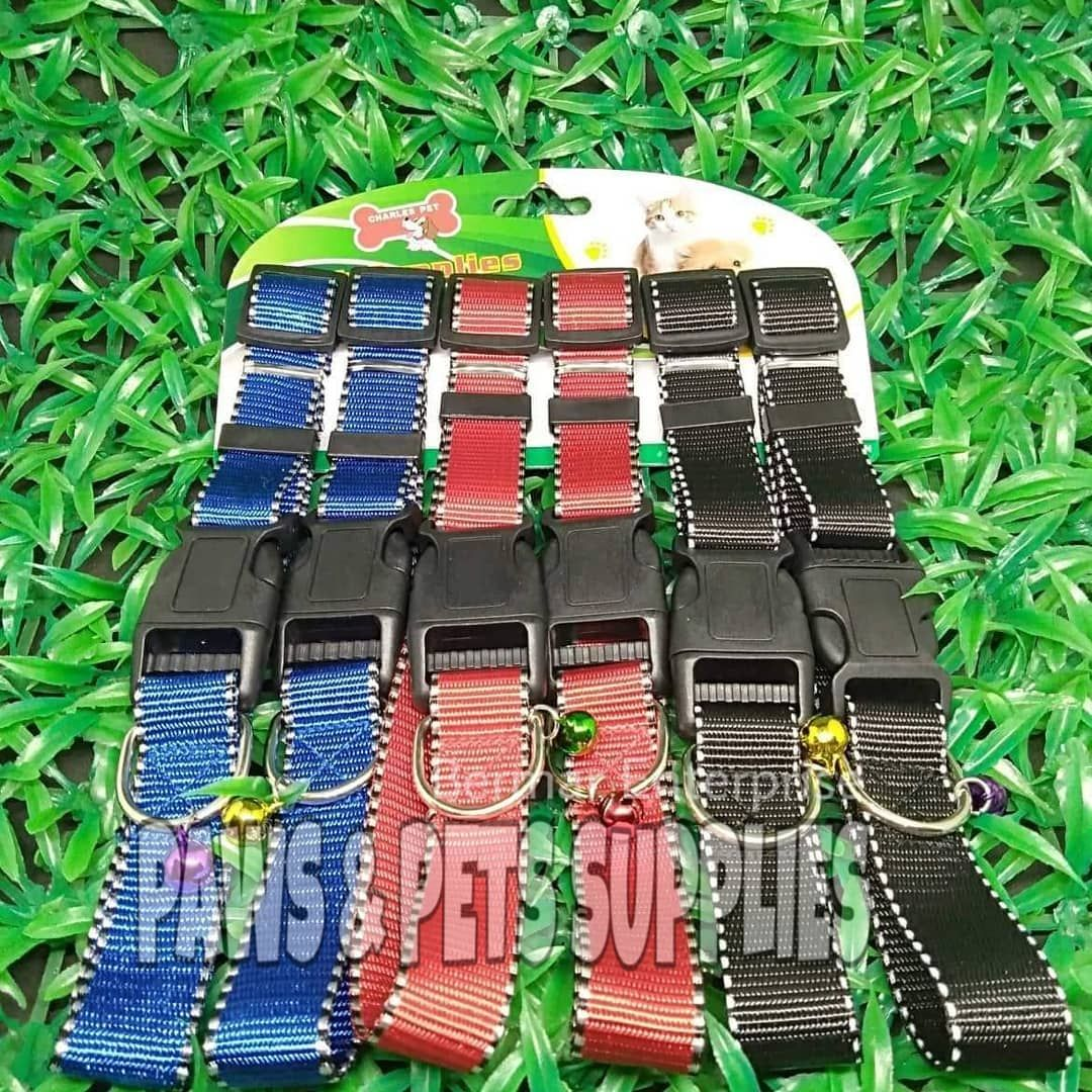 Dog Collars Visit Us At Paws And Pets Supplies F46 A Soriano