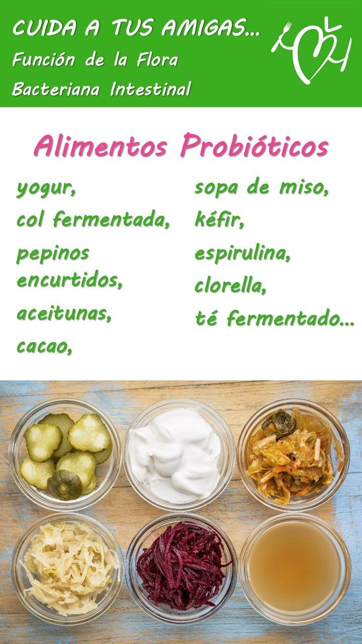 flora #intestinal #alimentos #dañada #bacteriana #alimentos