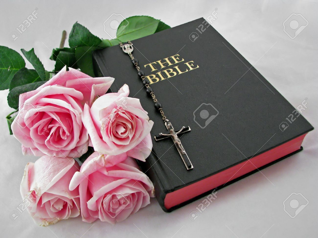 Pink bibles google search bibles pinterest bible scriptures for a funeral service can be encouraging for words of comfort wisdom and assurance during a difficult time of loss consider adding scripture izmirmasajfo