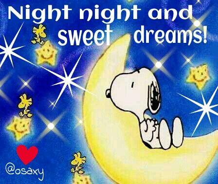 ✔ Night night and sweet dreams.   --Peanuts Gang/Snoopy, Woodstock, & Woodstock's pals