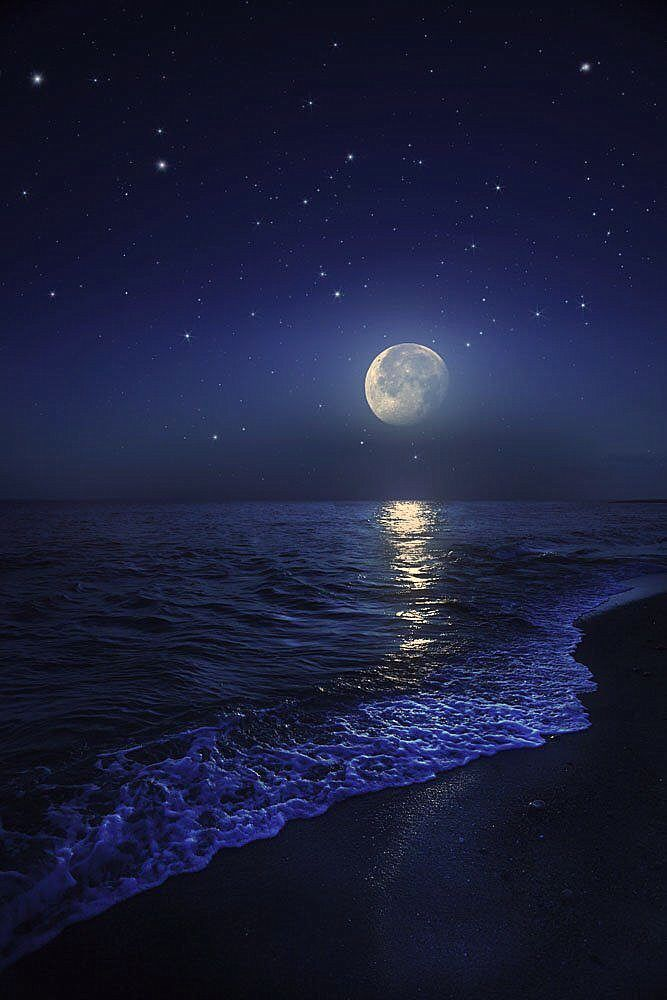 mine is the night, with all her stars | Ocean at night, Beautiful moon,  Beach at night
