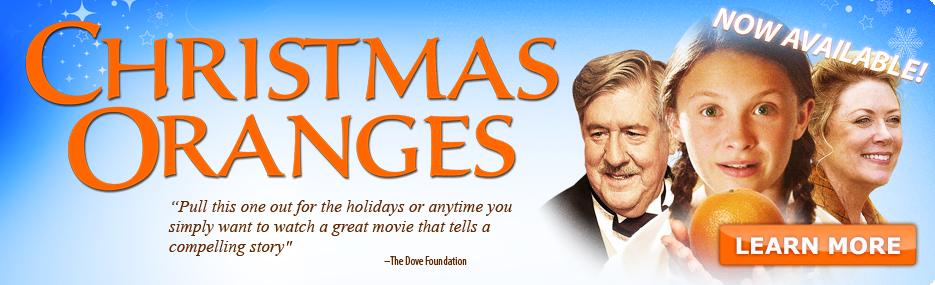 get into the holiday spirit w    u0026quot christmas oranges u0026quot