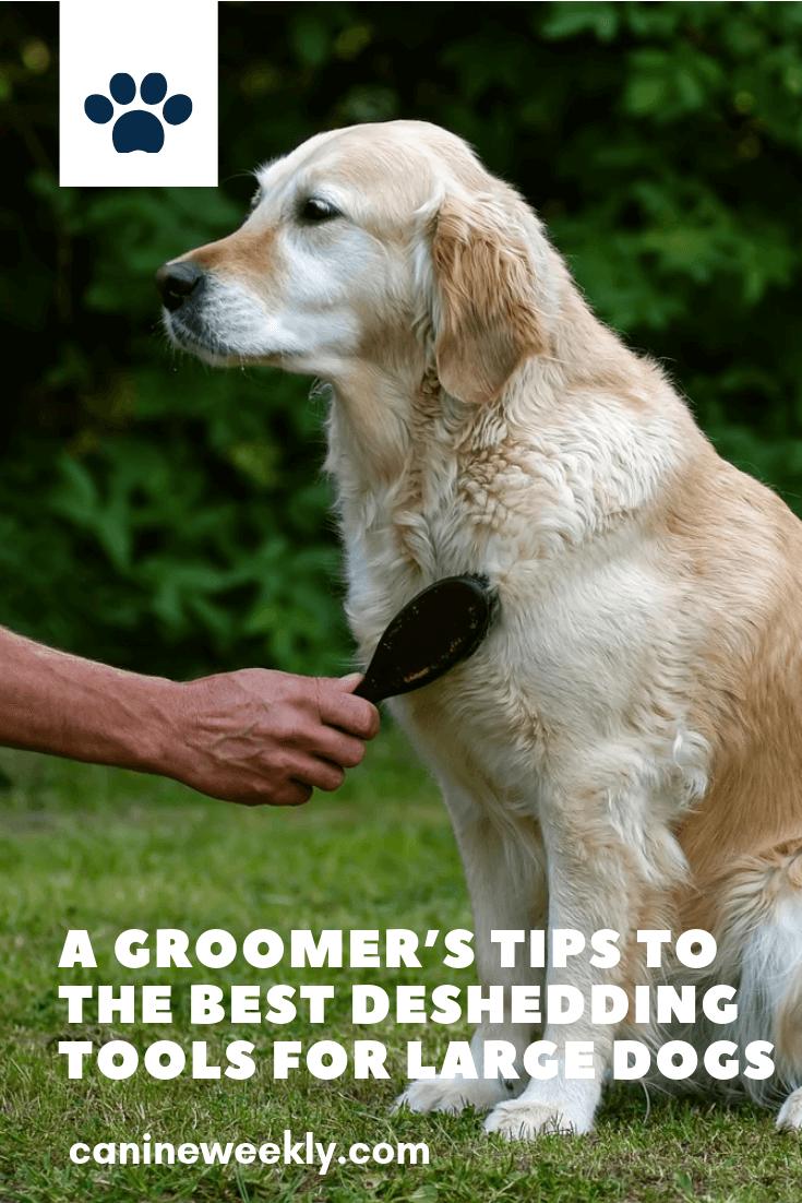 13 Best Dog Brushes For Shedding Short Long And Thick Fur Dog Brushing Large Dog Breeds Deshedding Dog