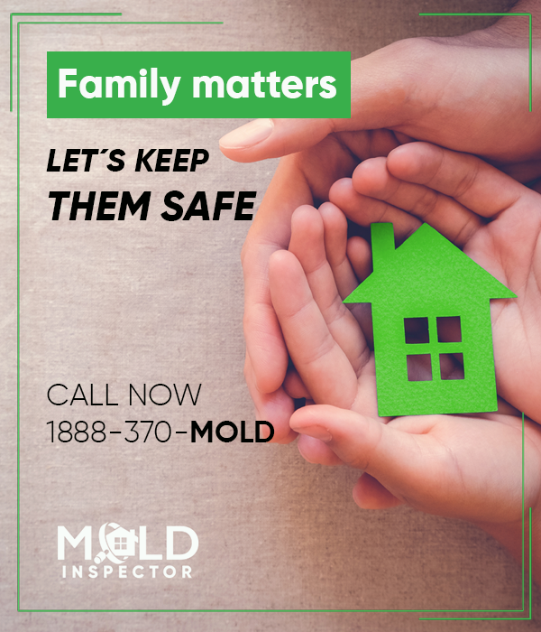 Mold Affects People Diffely For Some Exposure To Causes Nothing More Than Itchy Eyes Sneezing And Coughing Others It Can Lead Asthma