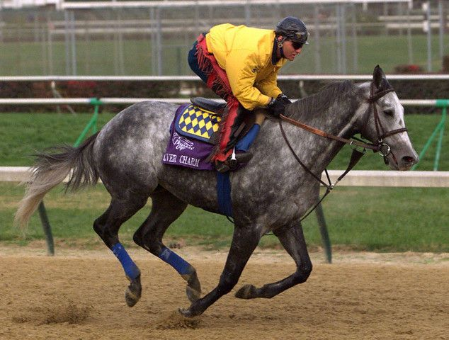 Silver Charm wins the Derby, 1997 | Kentucky Photo Archive