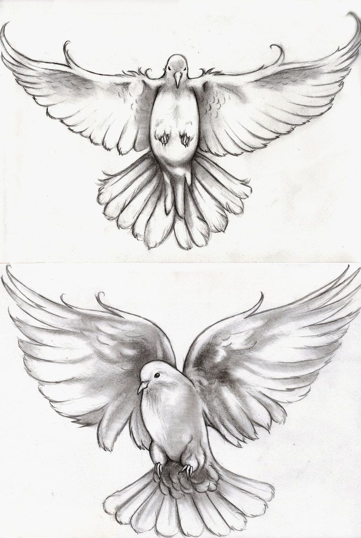 a commission for someone who wanted two different doves for representing her children