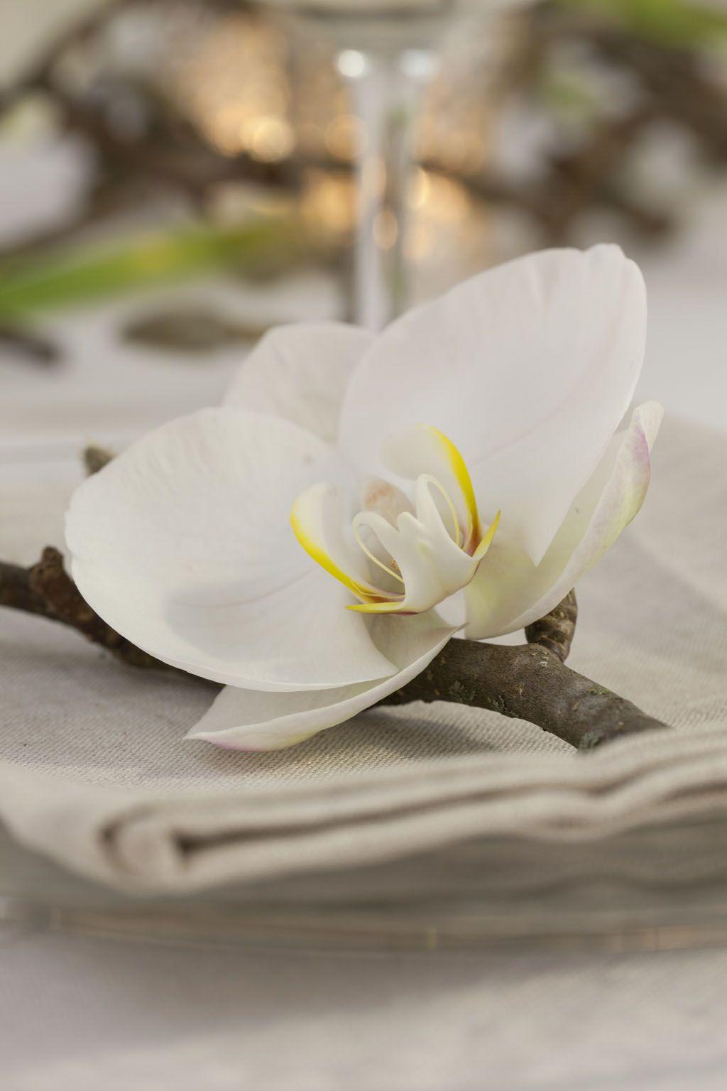 Kuvertpynt med orkide