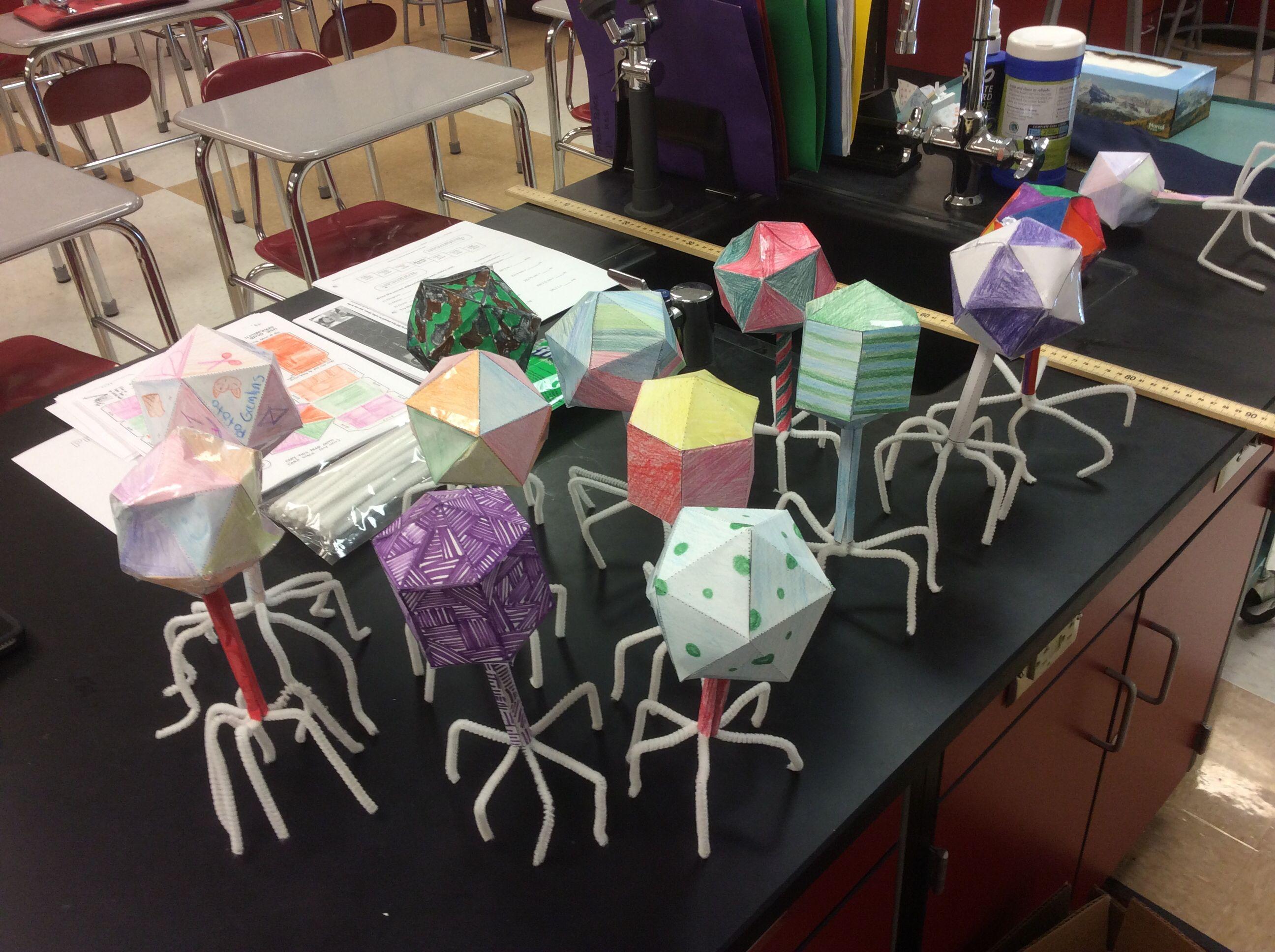 Virus Models