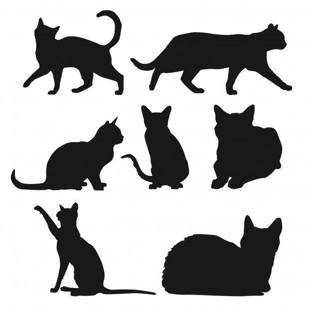 Silhouette Der Katzen In Verschiedenen Positionen 1108 248 Jpg 626 626 Silhouette Chat Illustration De Chat Silouhette Chat