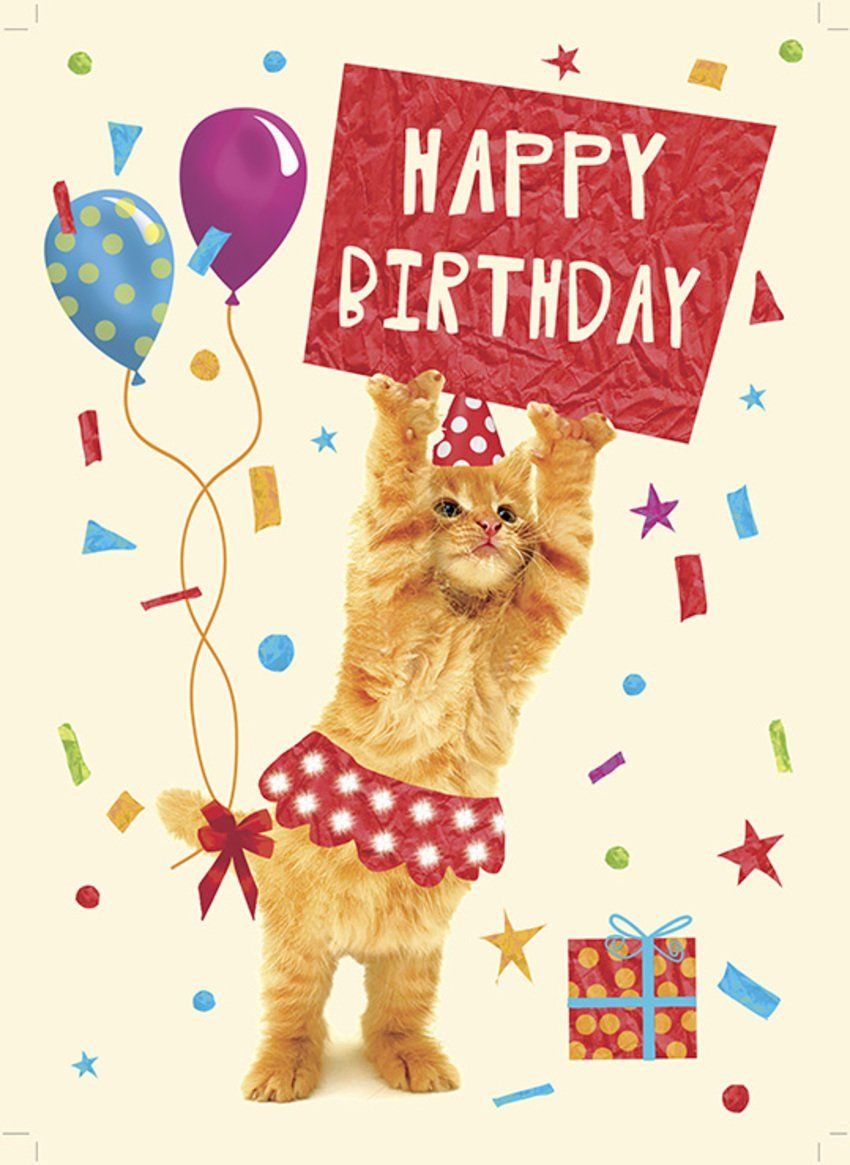 66 Best Birthday Pictures And Wishes Images Birthday Wishes Funny