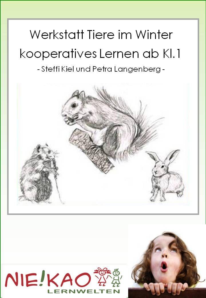 Werkstatt Tiere Im Winter Kooperatives Lernen Ab Kl 1