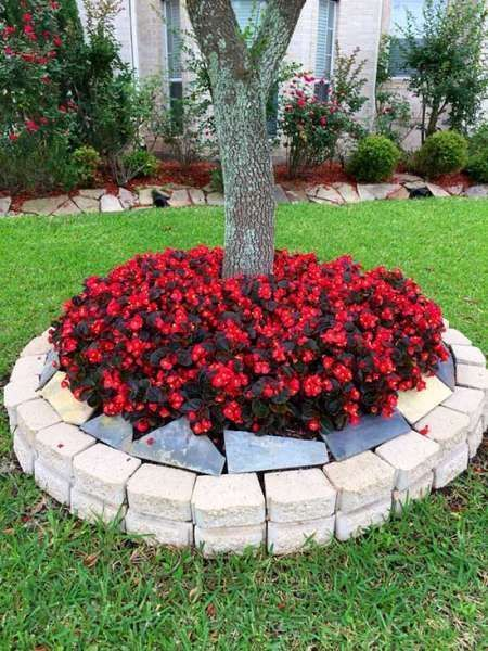 22 Beautiful Flower Beds Around Trees Decor Home Ideas Front Yard Flowers Landscaping Around Trees Raised Garden