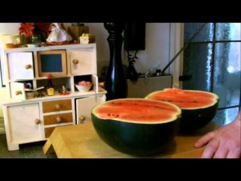 Wie pflanzt man eine Wassermelone ??? - YouTube