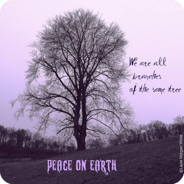 Quotes About Peace On Earth Images Of Peace On Earth Quotes Wallpaper Bible Quotes About Peace Peace On Earth Tree Quotes
