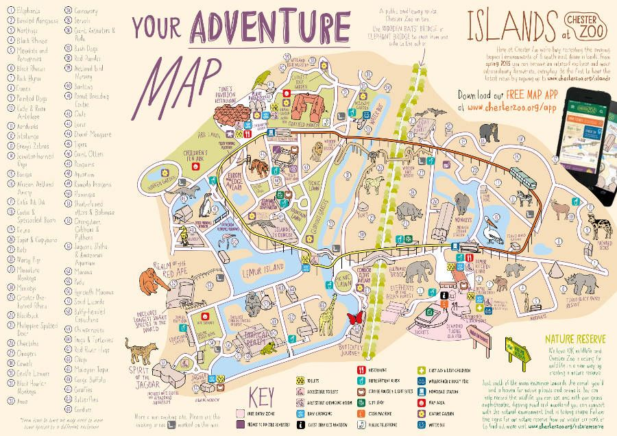 Image result for chester zoo adventure map maps Pinterest