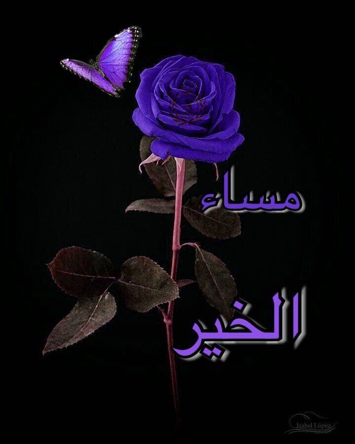 مساء الخير Good Morning My Friend Good Evening Good Night