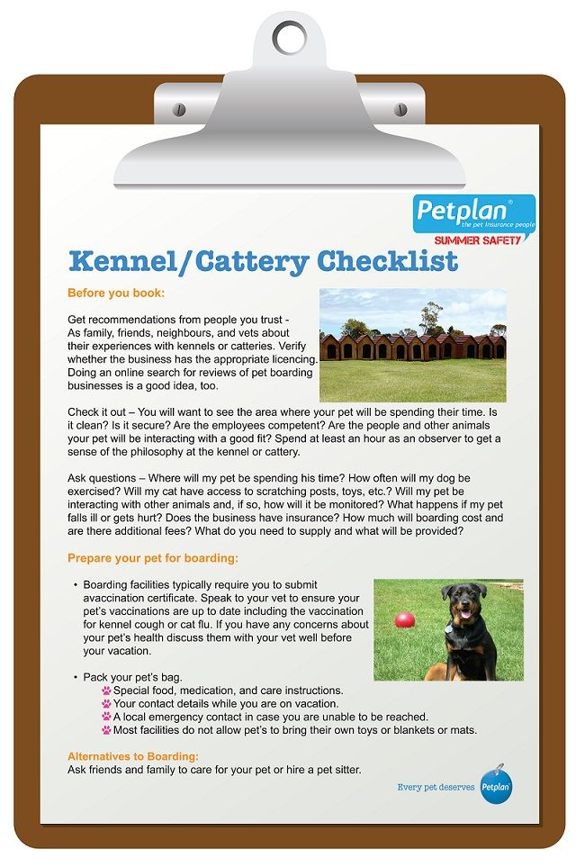 Pet Boarding Checklist From Petplan Pet Insurance To Find A