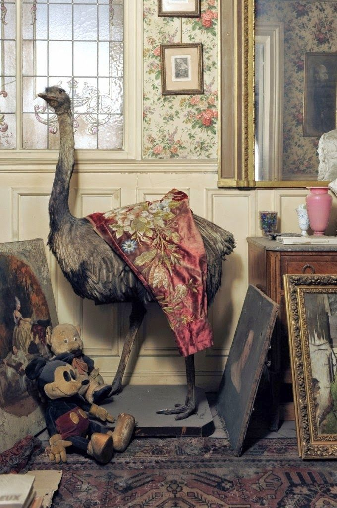 Into The Vague Parisian Apartment Frozen In Time