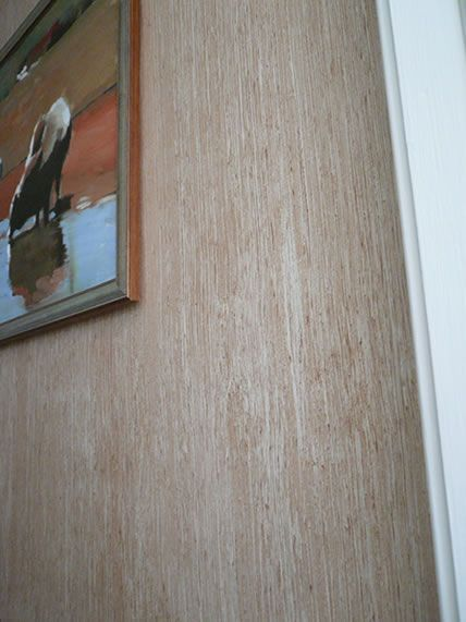 Faux Finish Painting Pictures Interior Design Faux Finishes Decorative Painting Murals