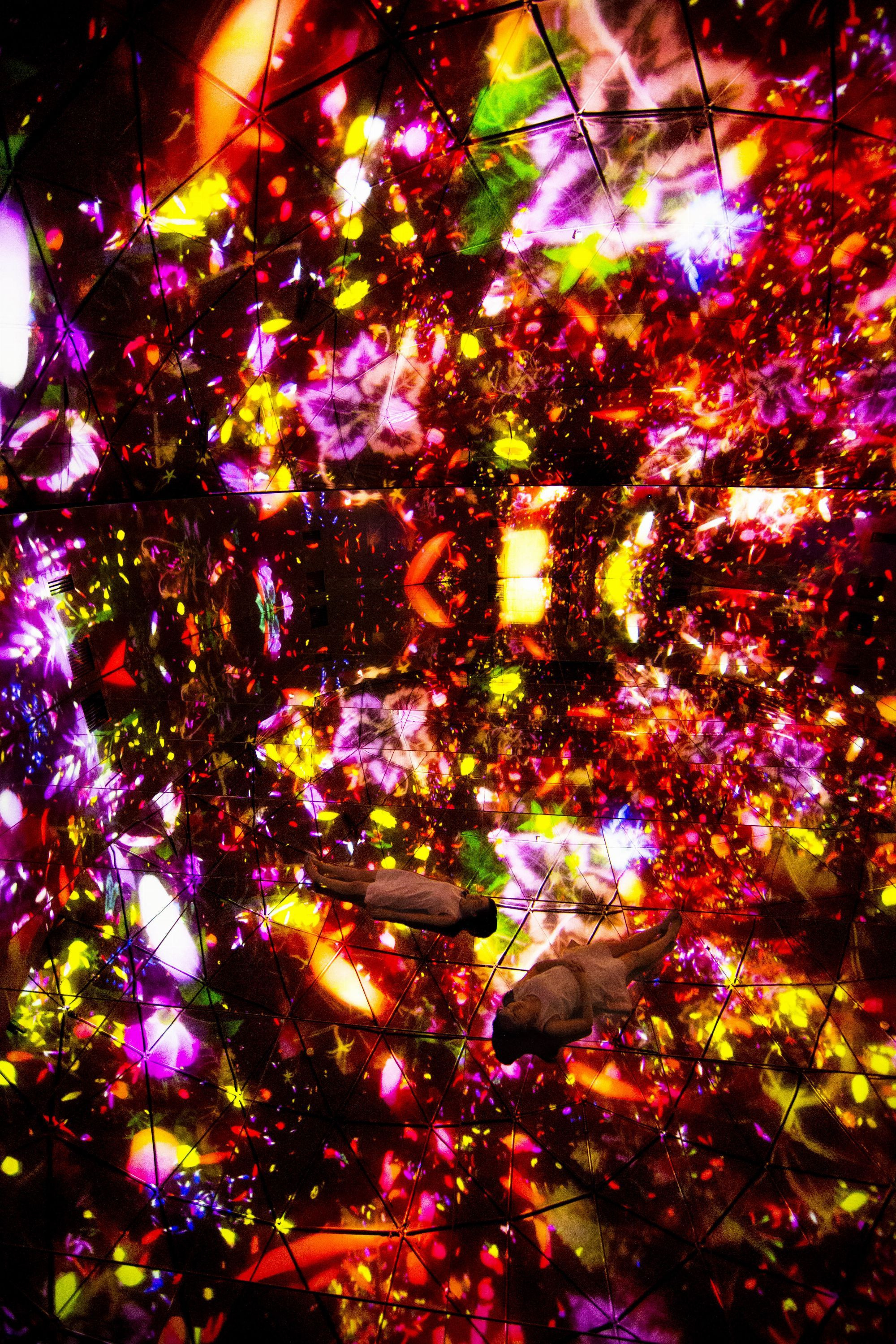 Floating in the Falling Universe of Flowers | teamLab / チームラボ