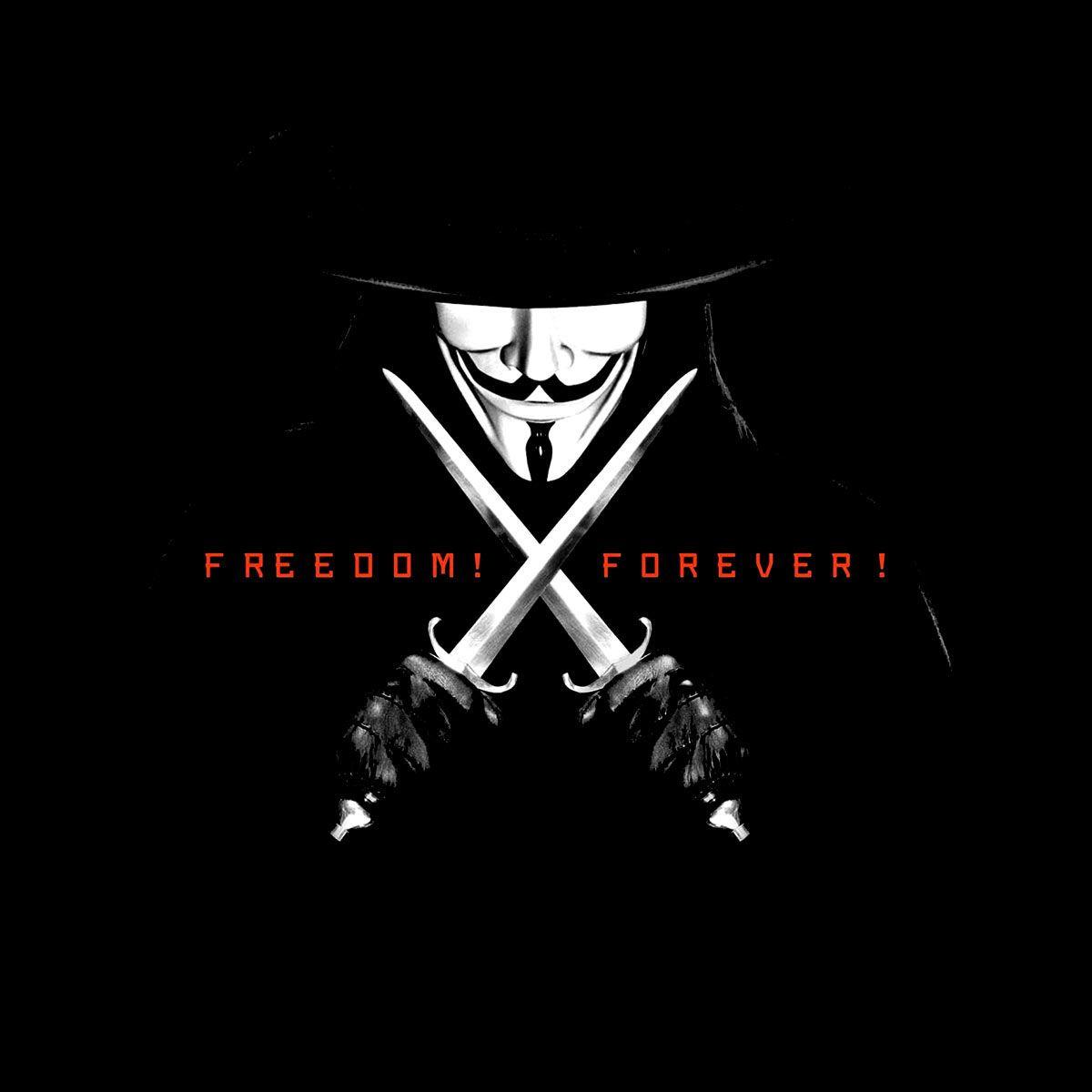 Sudadera V De Vendetta Freedom Forever V For Vendetta Vendetta Movies And Tv Shows