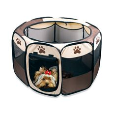 Small Portable Pet Playpen With Folding Design For Easy Storage   Bed Bath  U0026 Beyond
