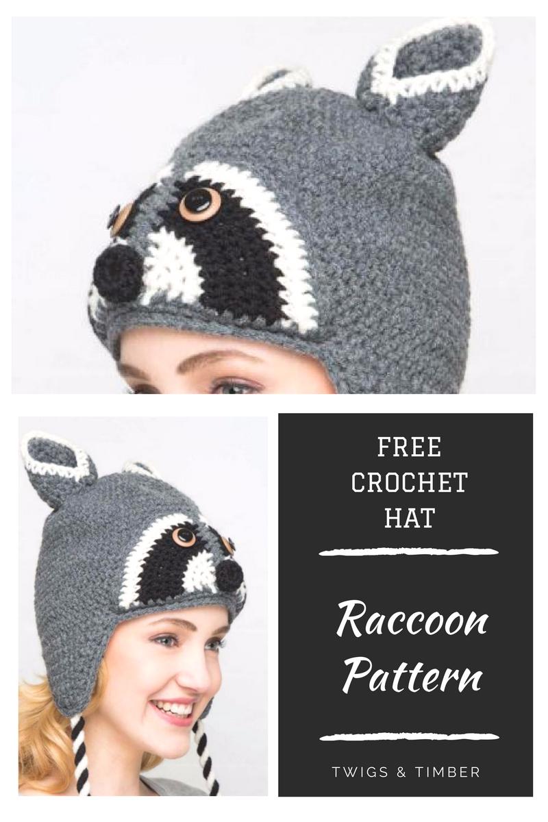 Free Raccoon Crochet Winter Hat Pattern - Download from Catalog ...