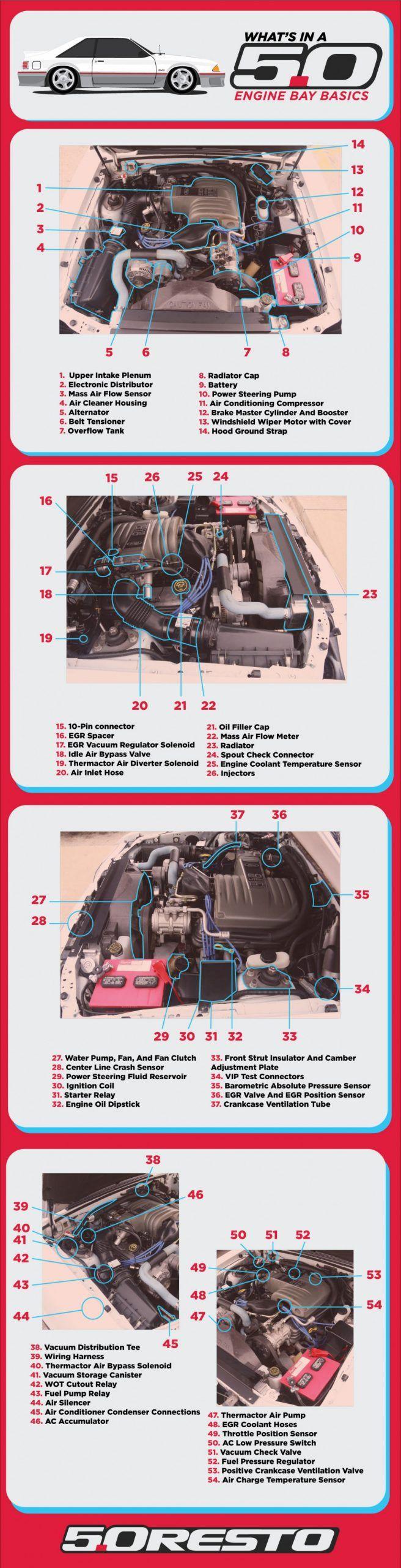 images?q=tbn:ANd9GcQh_l3eQ5xwiPy07kGEXjmjgmBKBRB7H2mRxCGhv1tFWg5c_mWT Engine Compartment Honda Accord Engine Parts Diagram