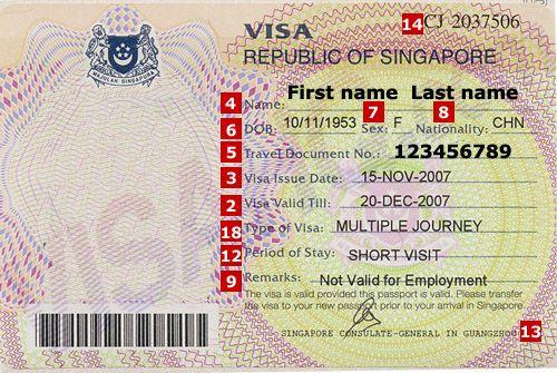 Check Singapore Visa Status Online   Visa   Singapore travel