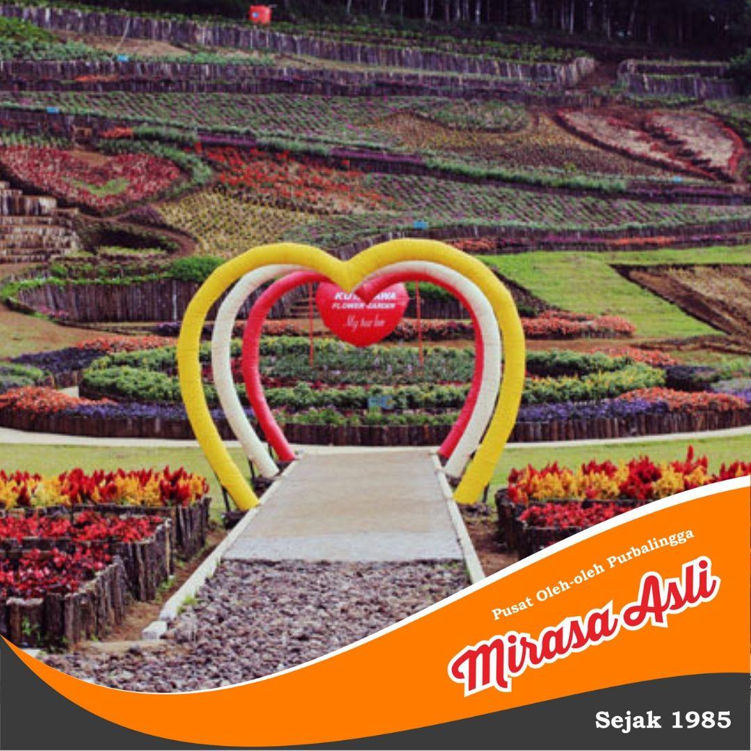 Taman Bunga Di Purbalingga Jawa Tengah