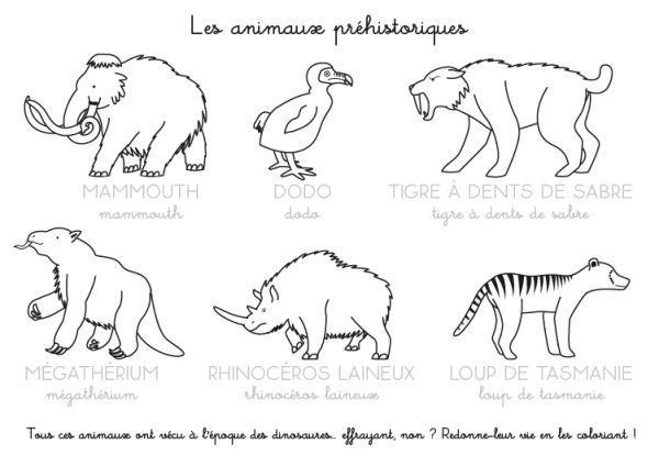Coloriage A Imprimer Imagier Des Animaux Prehistoriques