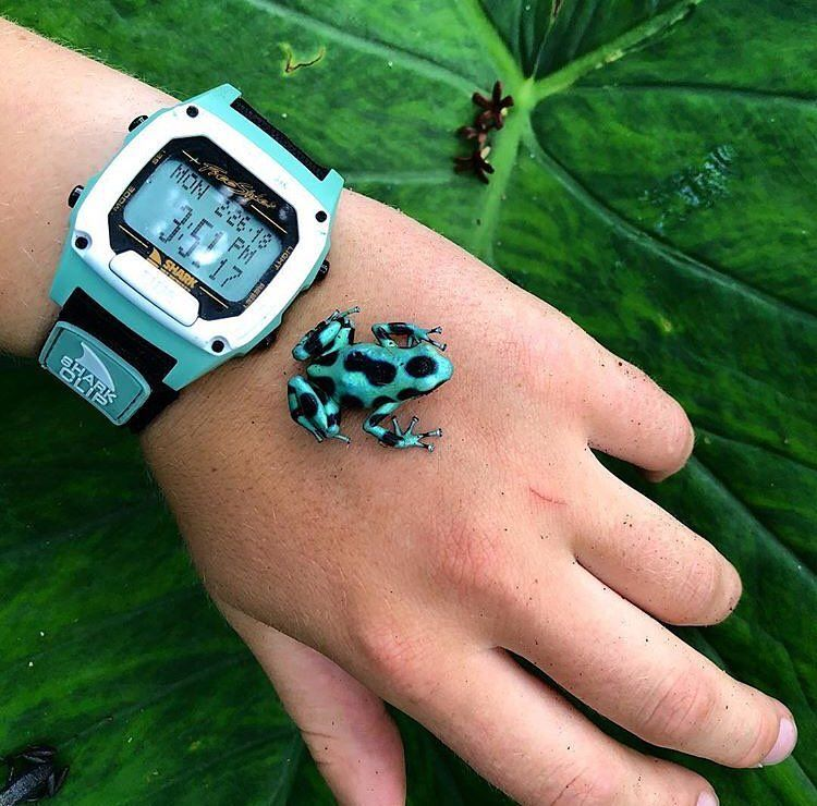 """Freestyle Watches on Instagram """"When you match the poison"""