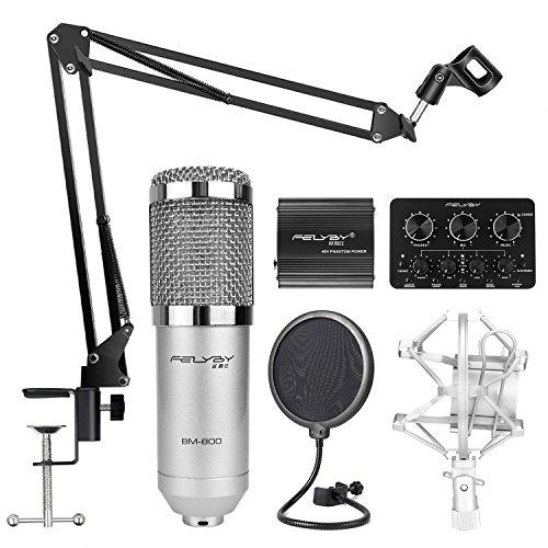 Professional Studio Broadcasting And Recording Capacitor Condenser Sale Instrumentstogo Com Microphone Set Microphone Recording Microphone