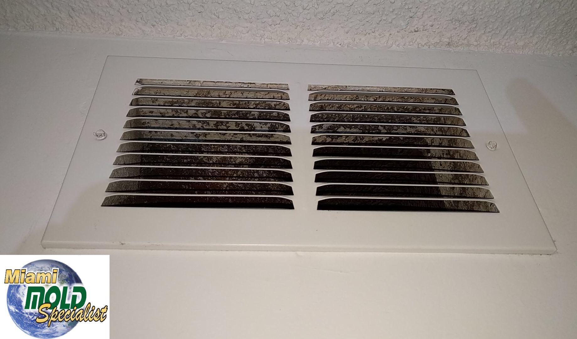 Rejillas Y Sempertines Del Aire Acondicionado Central Con Presencia Visible De Hongos Imagen Captada Por Nuestros Mold Inspection Mold Remediation House Mold