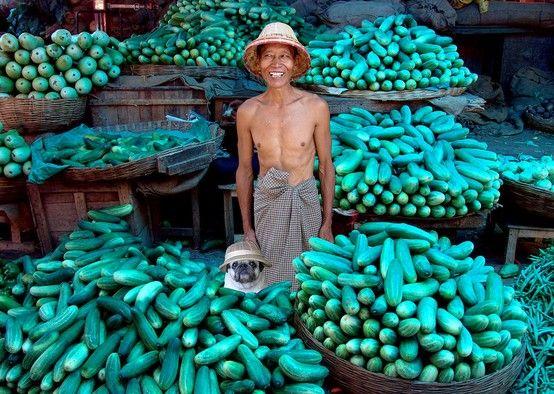 Cucumber merchant in Mandalay. Michael Sheridan.