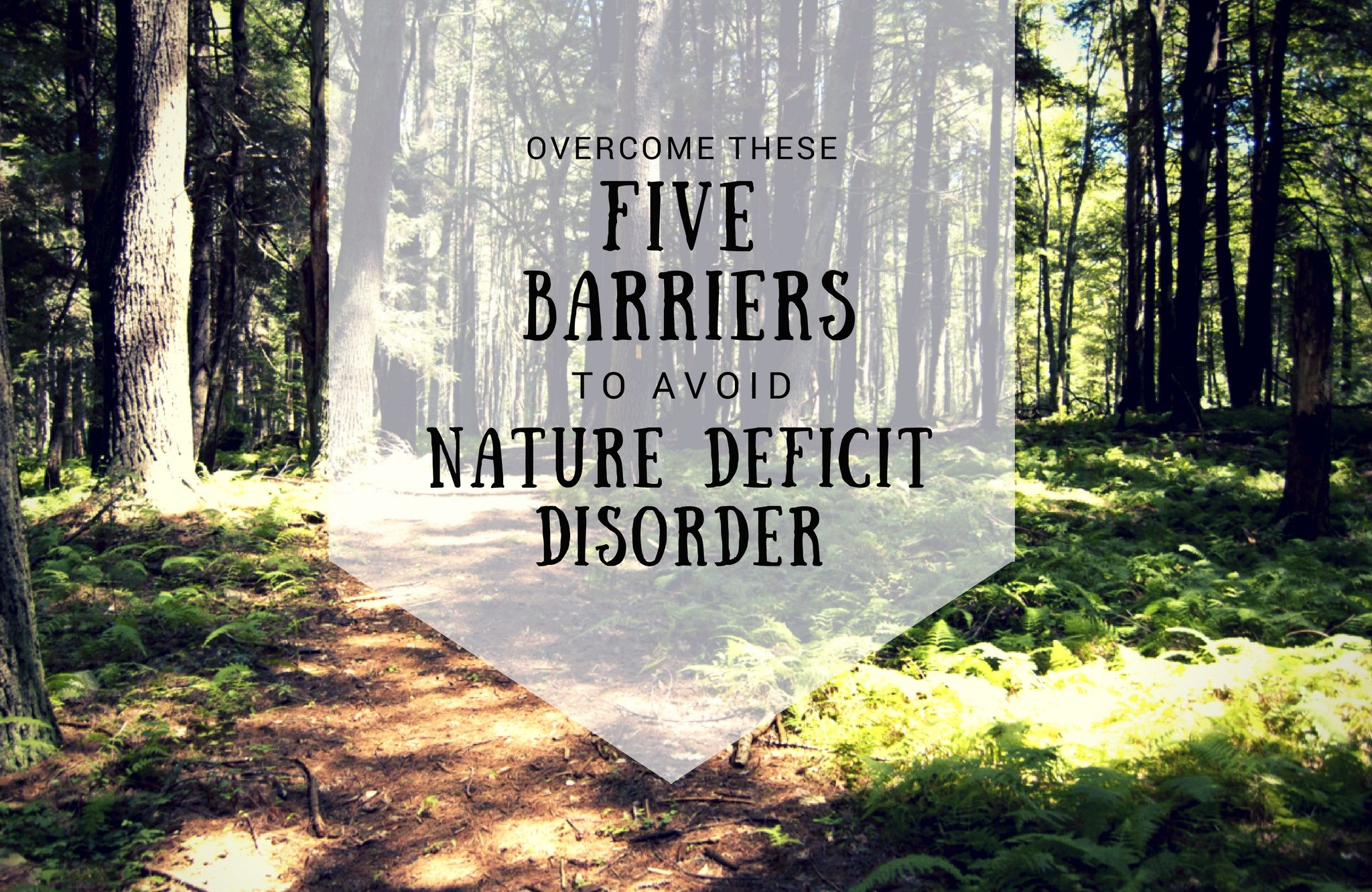 Overcome These Five Barriers To Avoid Nature Deficit Disorder