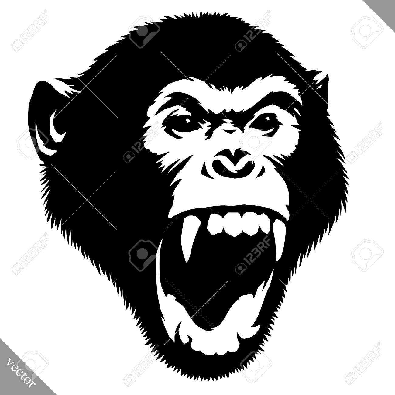 Vector Black And White Linear Paint Draw Monkey Vector Illustration Monkey Illustration Monkey Art Vector Illustration