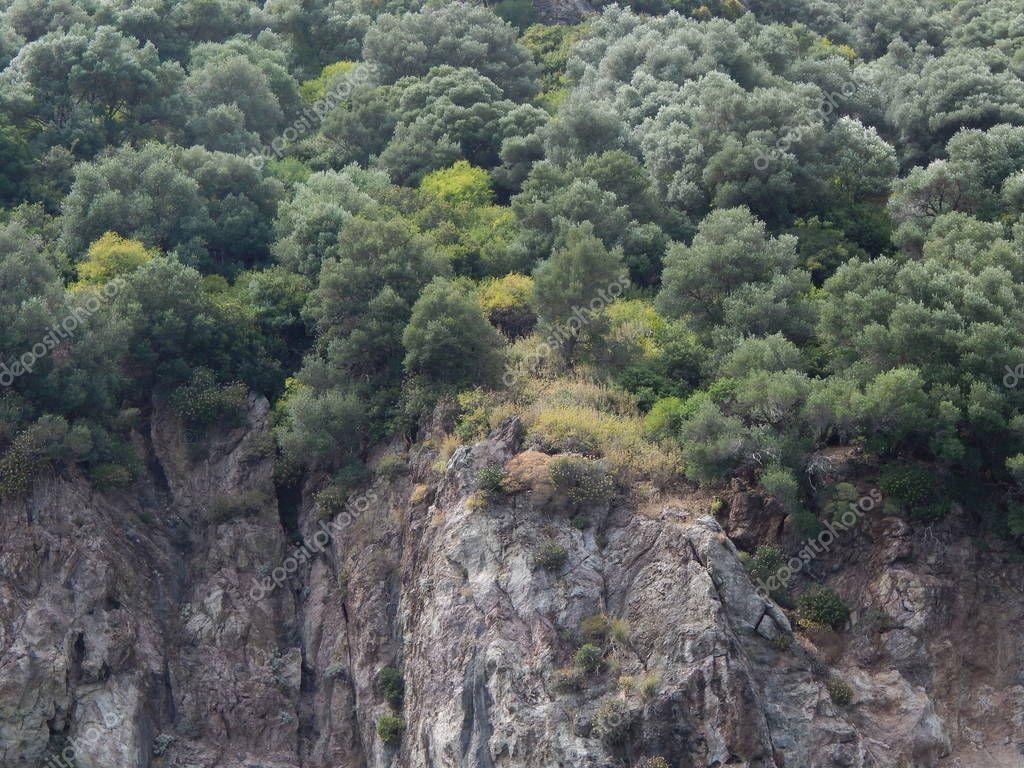 Mediterranean Aegean Sea Turkey Marmaris - Stock Photo , #Aff, #Sea, #Aegean, #Mediterranean, #Turkey #AD #aegeansea Mediterranean Aegean Sea Turkey Marmaris - Stock Photo , #Aff, #Sea, #Aegean, #Mediterranean, #Turkey #AD #aegeansea Mediterranean Aegean Sea Turkey Marmaris - Stock Photo , #Aff, #Sea, #Aegean, #Mediterranean, #Turkey #AD #aegeansea Mediterranean Aegean Sea Turkey Marmaris - Stock Photo , #Aff, #Sea, #Aegean, #Mediterranean, #Turkey #AD #aegeansea