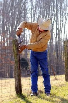 Wooden fence posts last for decades if you add wood preservative and prevent water from pooling at the base.