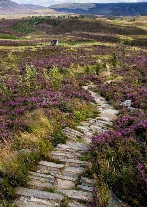 Highlands of Scotland #travelscotland