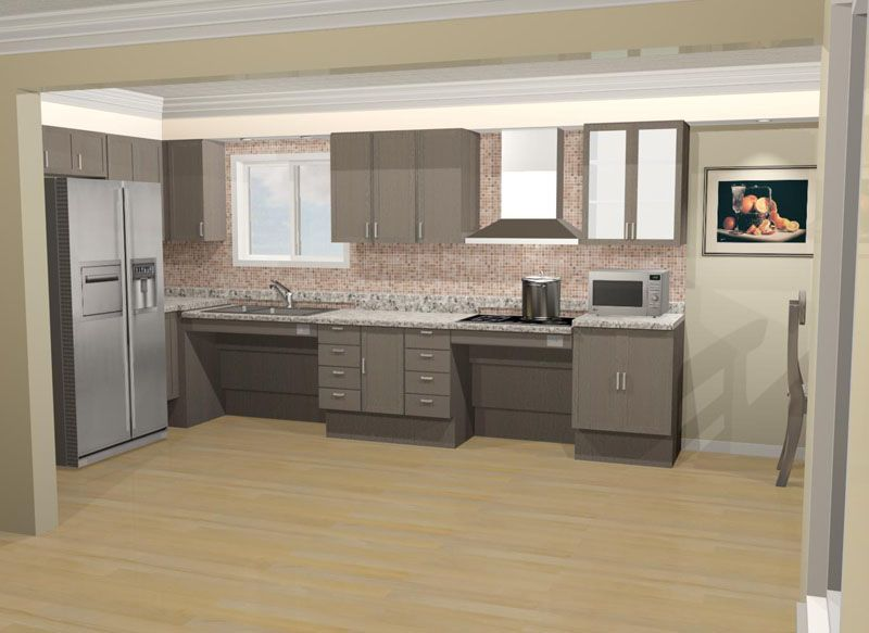 Like The Open Design With The Roll Under Sink Area And Wall Oven With A  Door That Opens Sideways Instead Of Down. Wheelchair Accessible Kitchen |  Pinterest ...