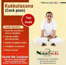 image result for naturoveda health world  health world