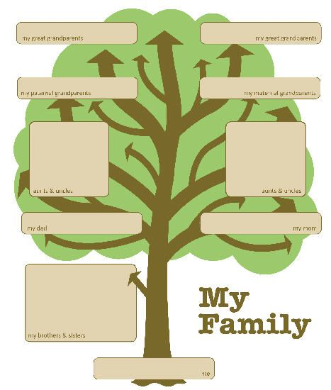 Helpful Forms And Sheets Family Tree Activity History