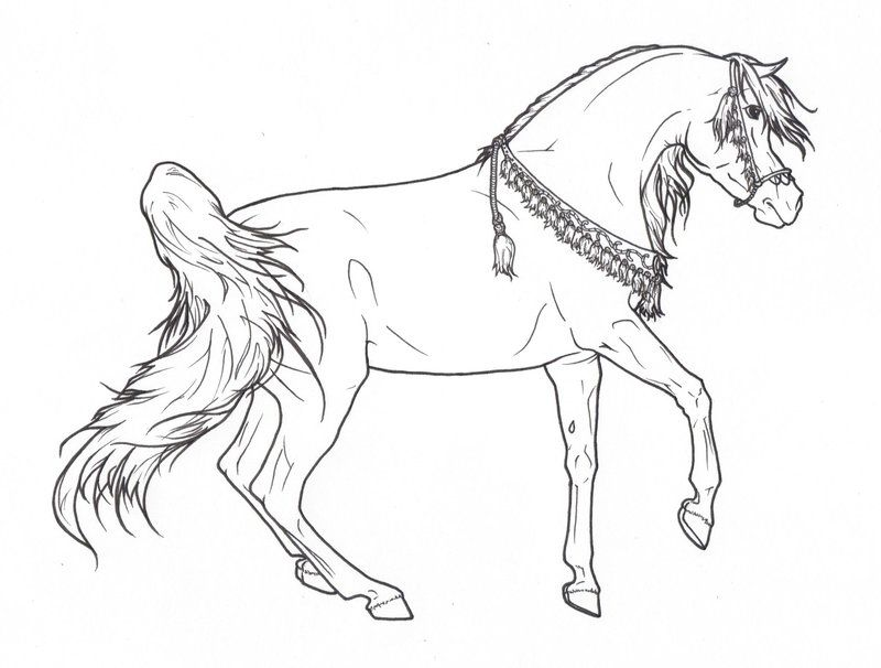 Arabian Horse with Necklace Lineart by ReQuay on