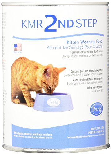 Petag Kmr 2nd Step Kitten Weaning Food 14oz Click Image To Review More Details This Is An Affiliate Link Catsfunn Weaning Foods Weaning Cat Food Coupons