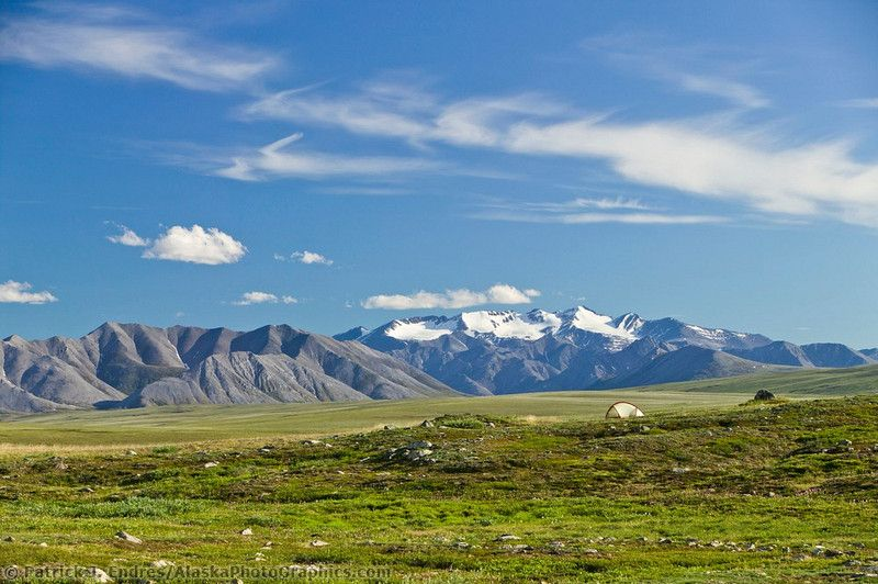 explore Alaska in the summer time