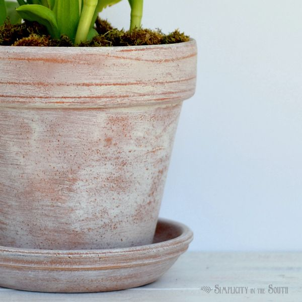 How To Age Terracotta Pots With A Mixture Of Annie Sloan Chalk Paint And Wax Aging Terra Cotta Pots Terracotta Pots Painted Clay Pots