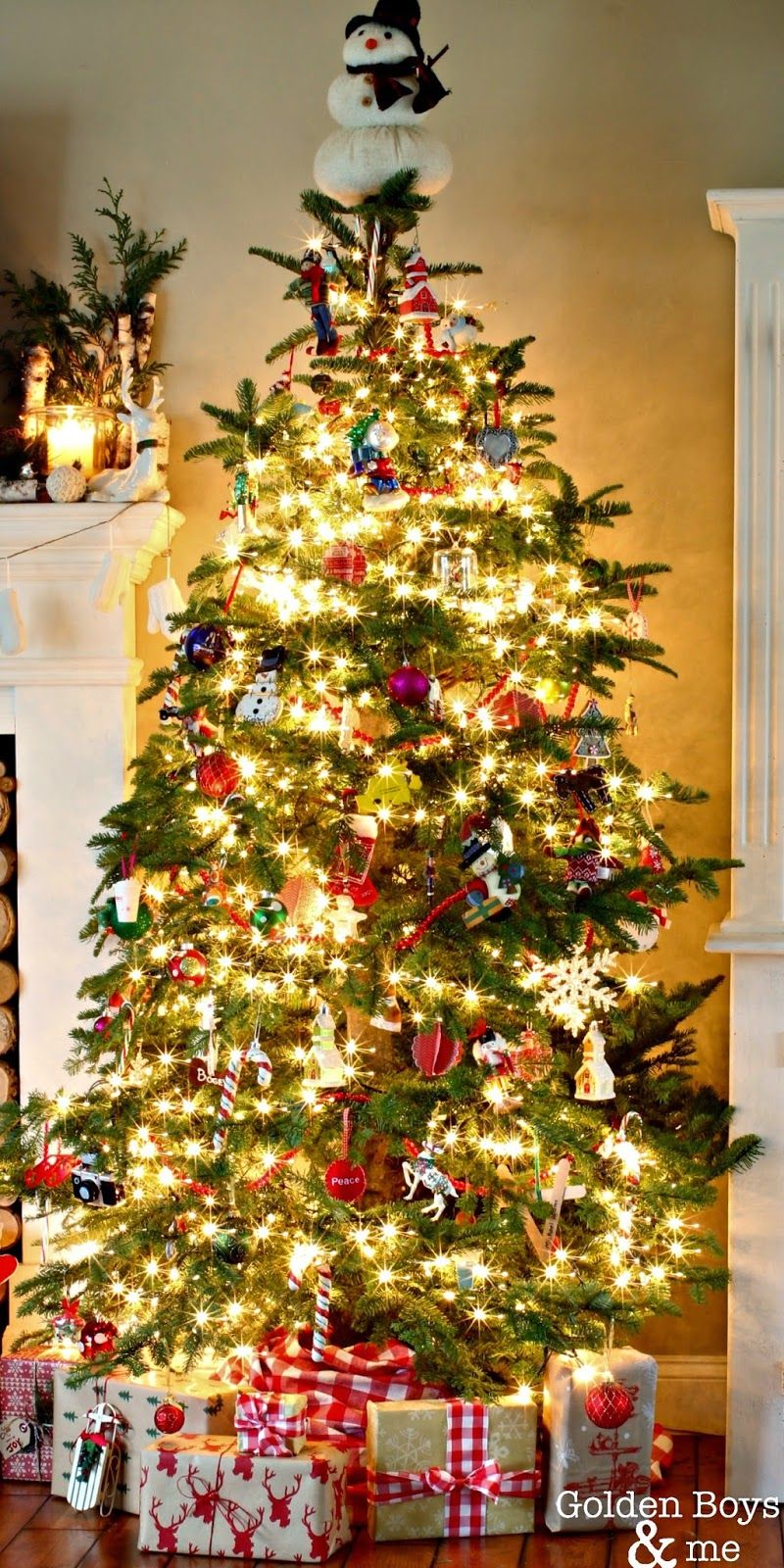 Christmas in our Living Room   Noble fir christmas tree, Firs and ...