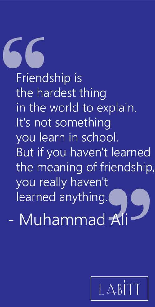 78 Wise Quotes On Life Love And Friendship: Wise Words About Best Friends: Friendship Quotes With