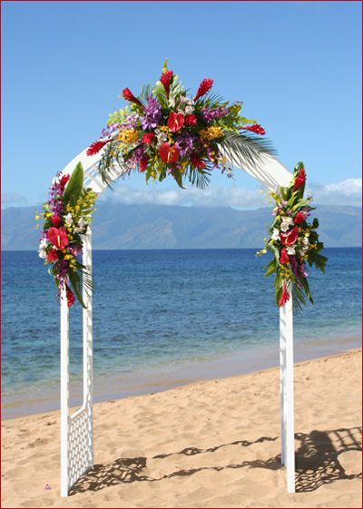 Diy Wedding Arch Beach Arches on Pinterest | ...